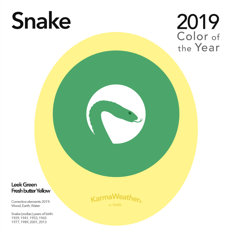 Image result for color of the year 2019 year of the snake karmaweather