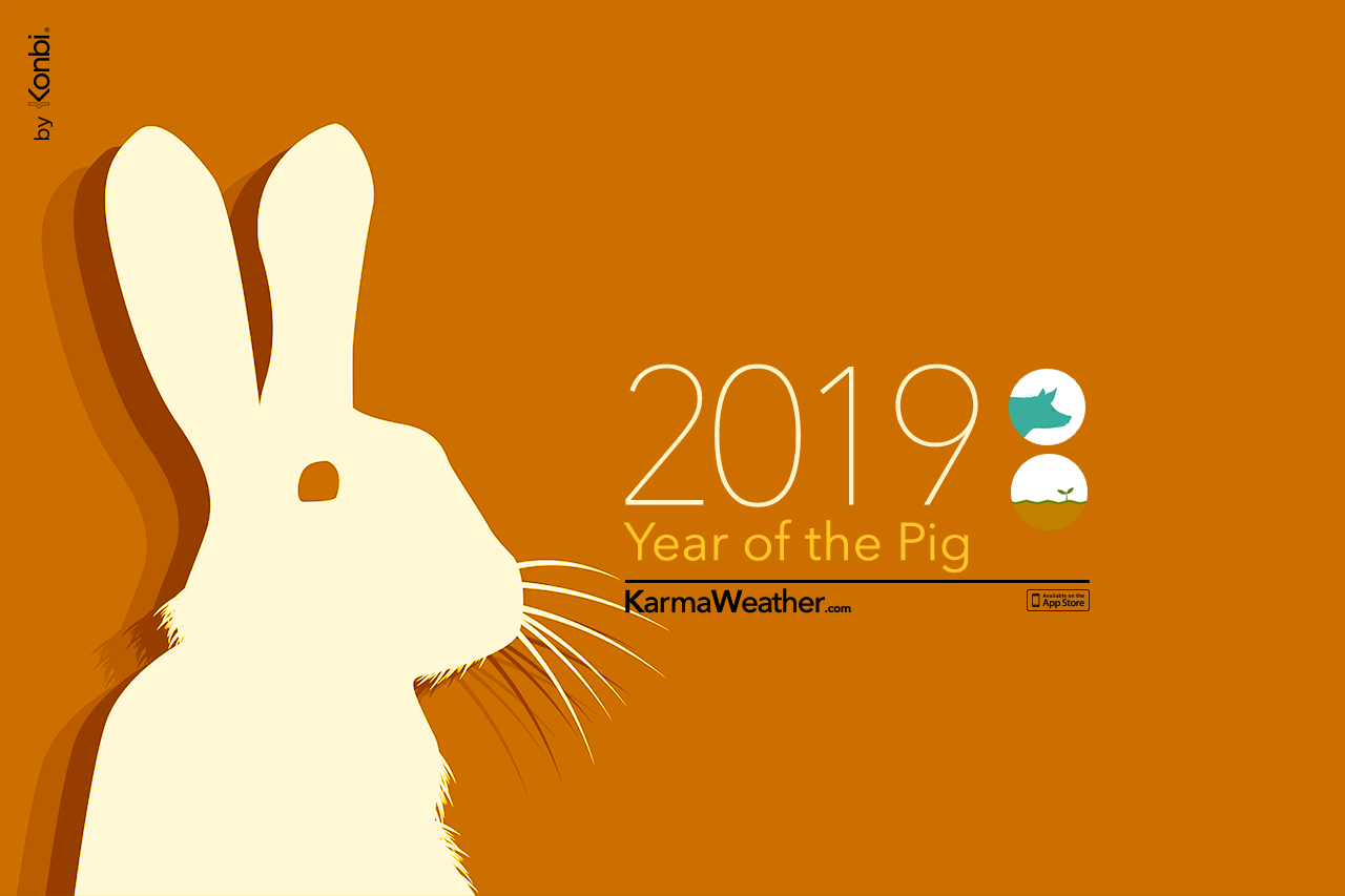 Rabbit 2019 Chinese Horoscope - Year of the Rabbit's 2019 predictions