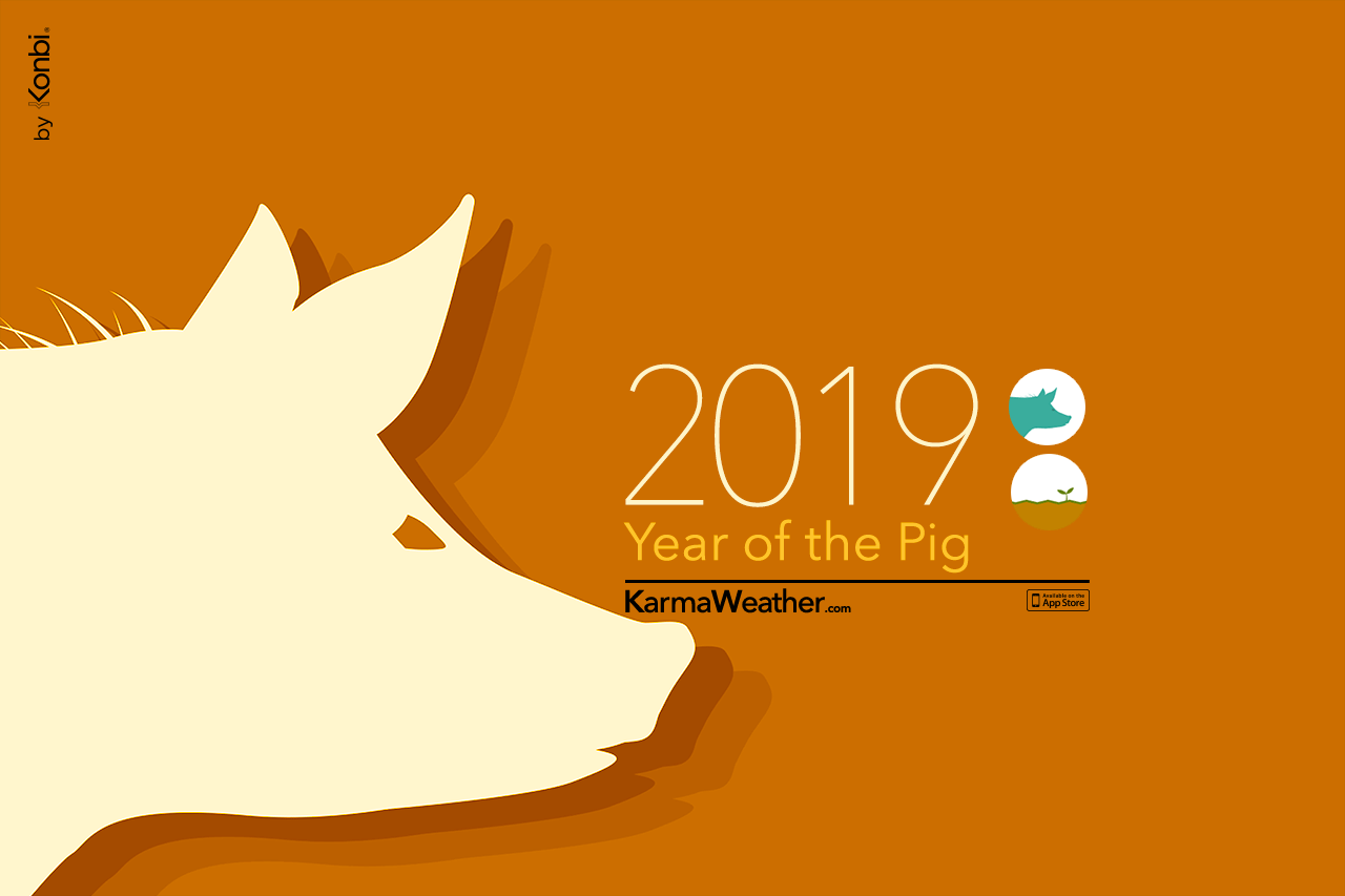Pig 2019 Chinese Horoscope - Year of the Pig's 2019 predictions