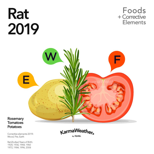 Rat 2019 Chinese Horoscope Year Of The Rats 2019 Predictions