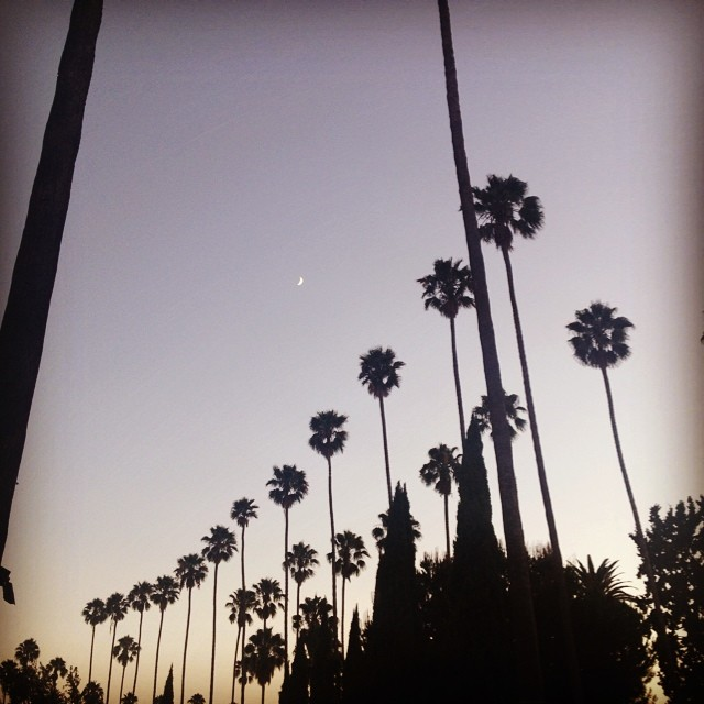 Hollywood_Forever_Cemetary_10.jpg