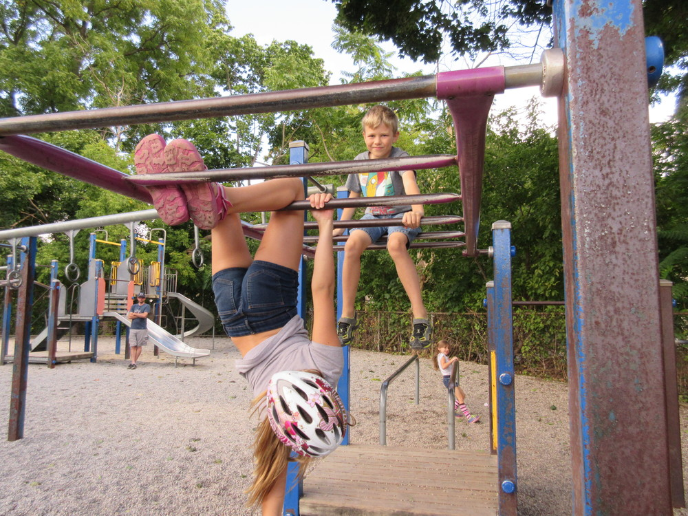 """It's fun to hang off the monkey bars. It a good spot to be because you can see all of the trees and grass"""