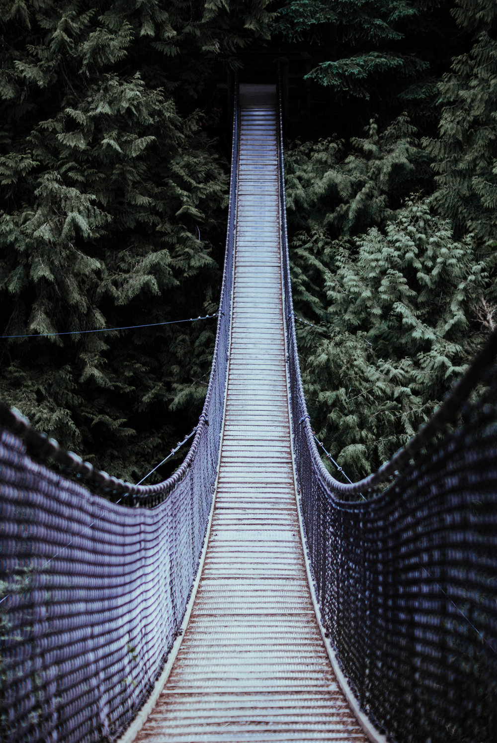 Location: Lynn Canyon Suspension Bridge, Vancouver, BC
