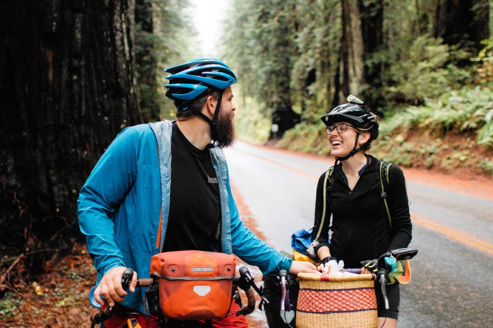 redwoods-05.jpg