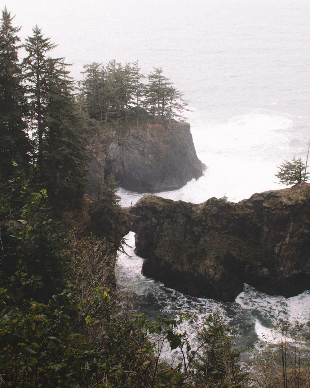 oregon-coast-08.jpg