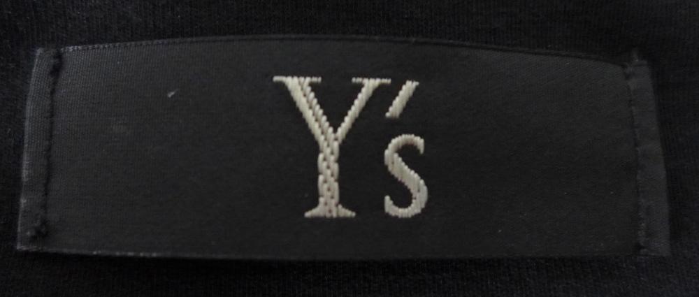 Y's logo.JPG