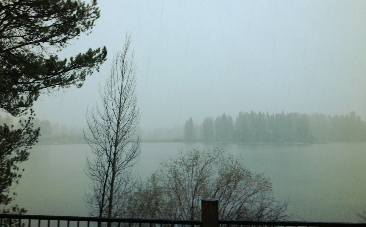 130529, snowing heavily, it's May 29th in Grand Lake, Colorado.