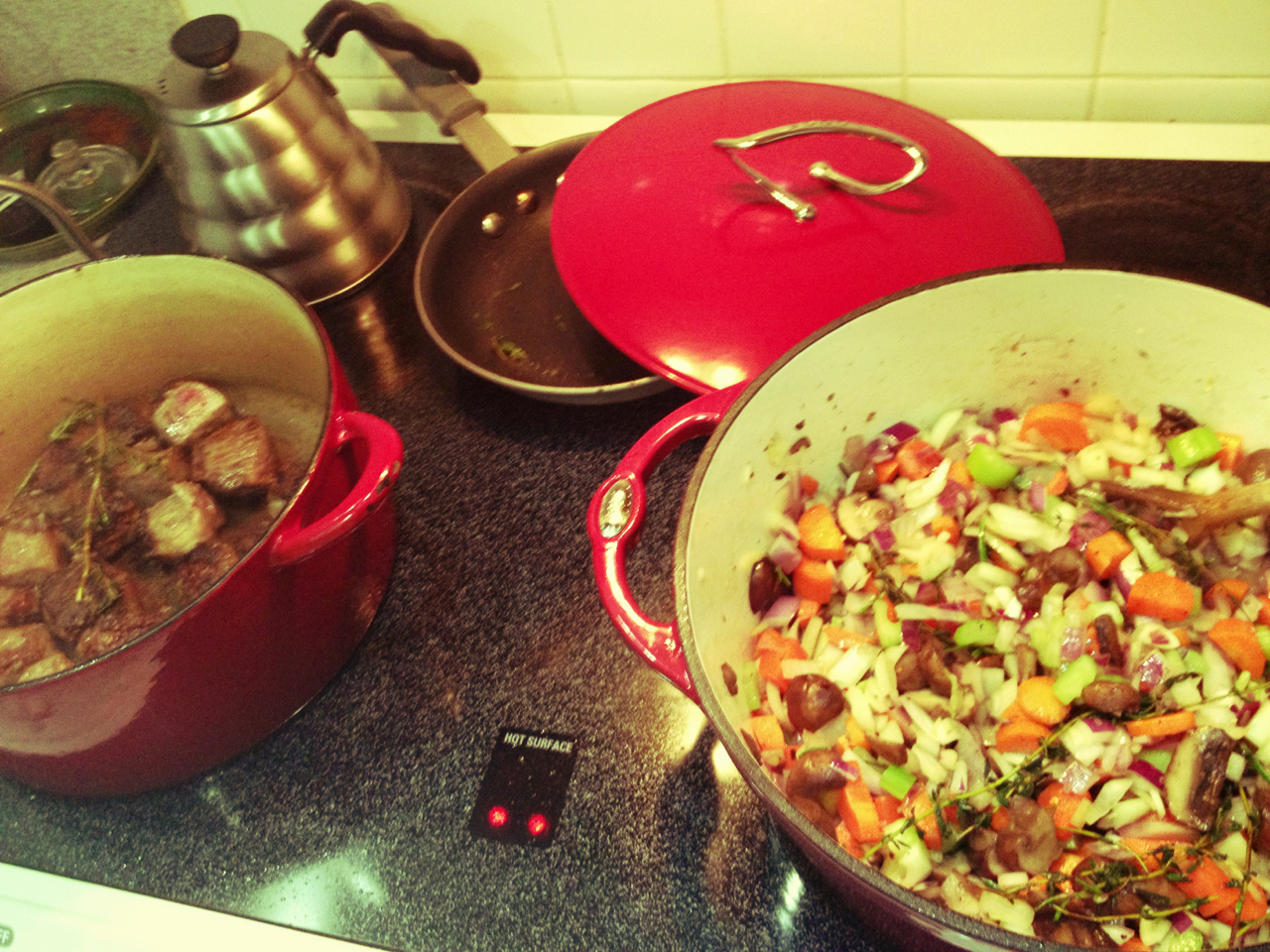 130202, beef stew, it's cold outside.
