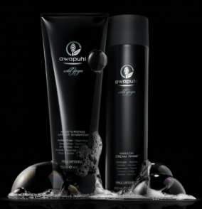 Is you hair suffering from heat damage? Is it dry, brittle and drab?? We have the treatment for that!  Paul Mitchell's Awapuhi Wild Ginger Keratin Intensive Treatment  delivers intense hydration and shine with noticeable results. This weekly deep conditioner repairs and protects vulnerable hair. Safe on all type of hair and is 100% color safe.