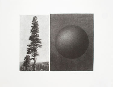 The-View-(Sequoia-and-Moon).jpg