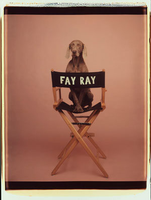 Fay Ray , 1990, Color Polaroid, 24 x 20 inches