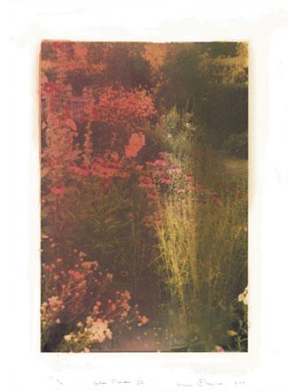 Autumn-Border-II.jpg