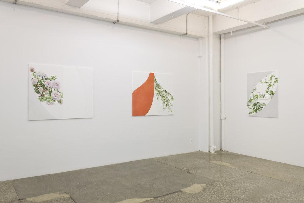 Installation Views: Georgia Marsh: Arc Paintings