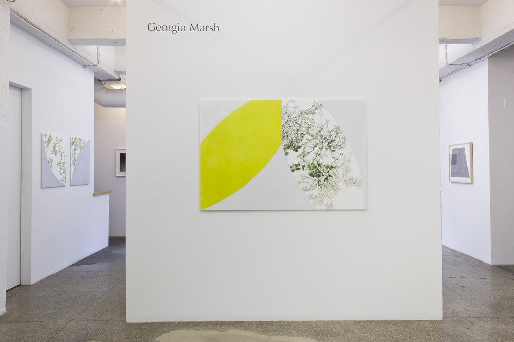 Installation View: Georgia Marsh: Arc Paintings