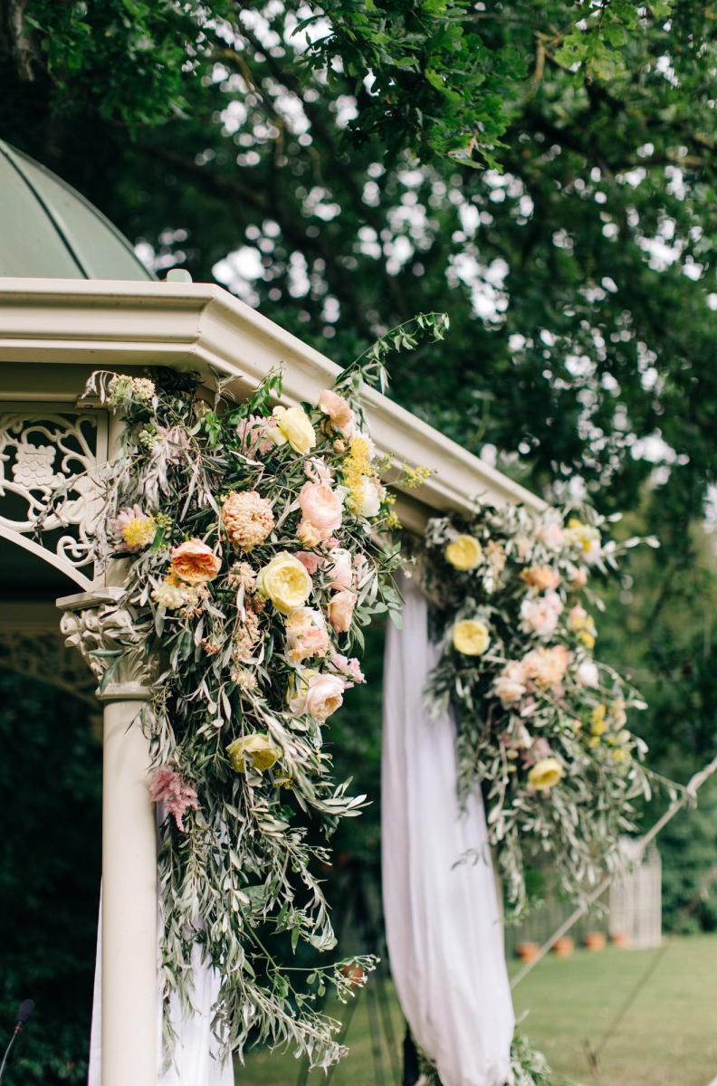 Vervain Flowers MandJphotos 05