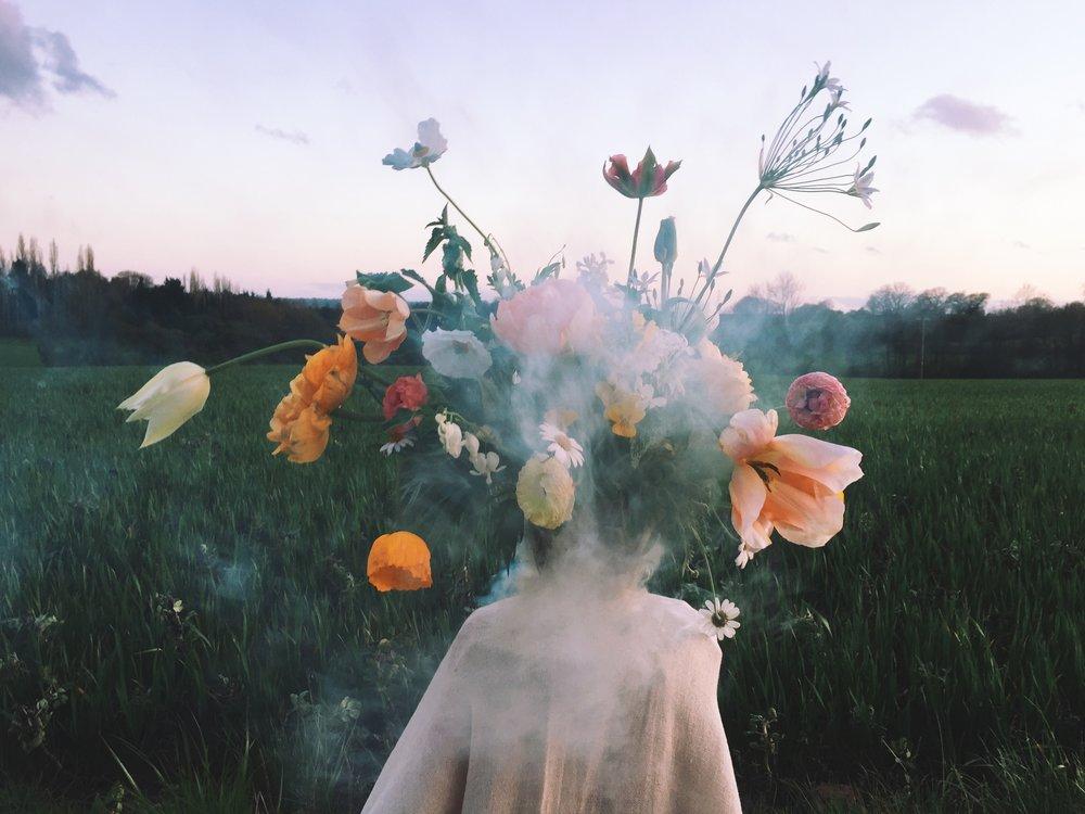 smoke flowers vervain