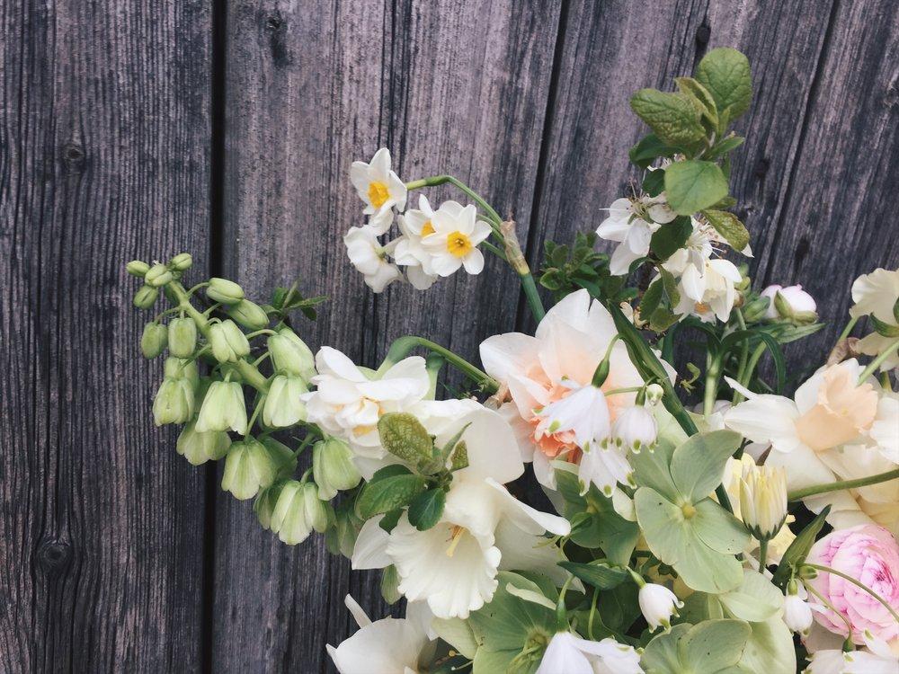 vervain spring bouquet 02