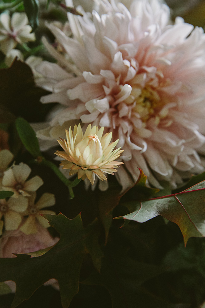 autumnal homegrown wedding flowers in pinks, blush and brown