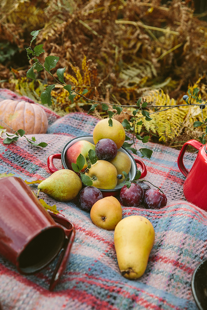 unique autumnal woodland wedding with fruits