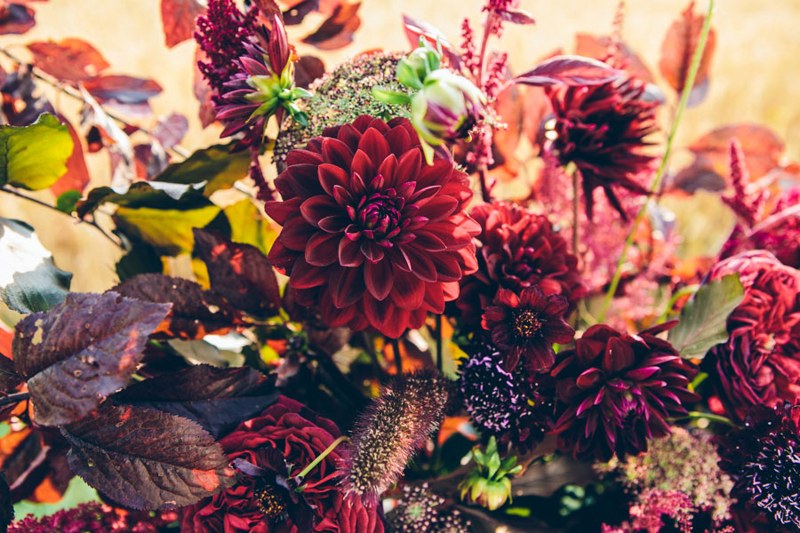 unique dark moody red wedding flowers