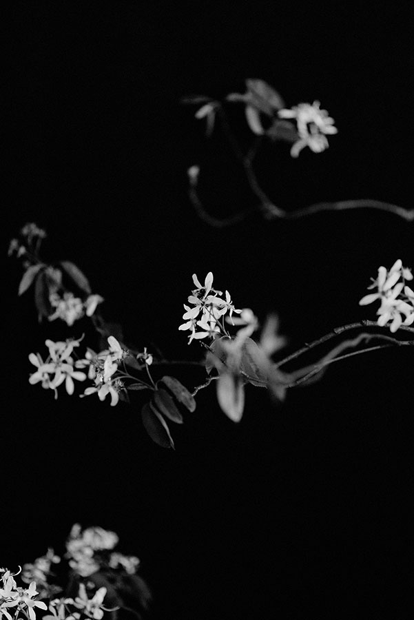 unique-dark-moody-bridal-flowers-05.jpg