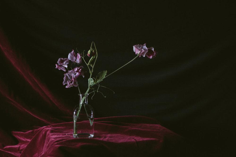 homegrown-summer-flowers-bottles-01.jpg