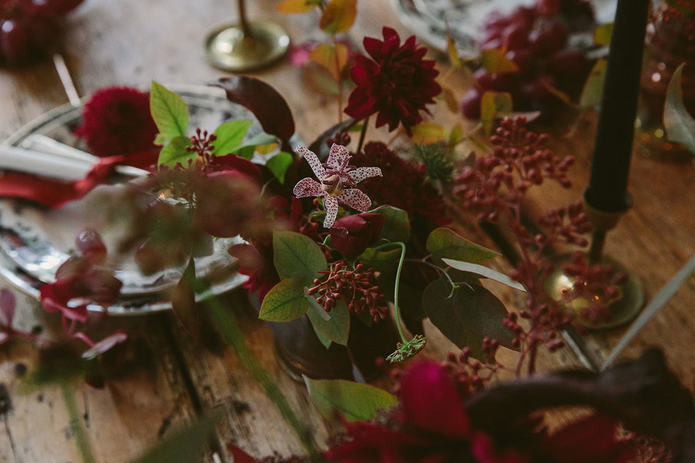 vervain styling flowers and events