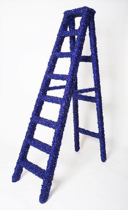 5ȼ STEP LADDER