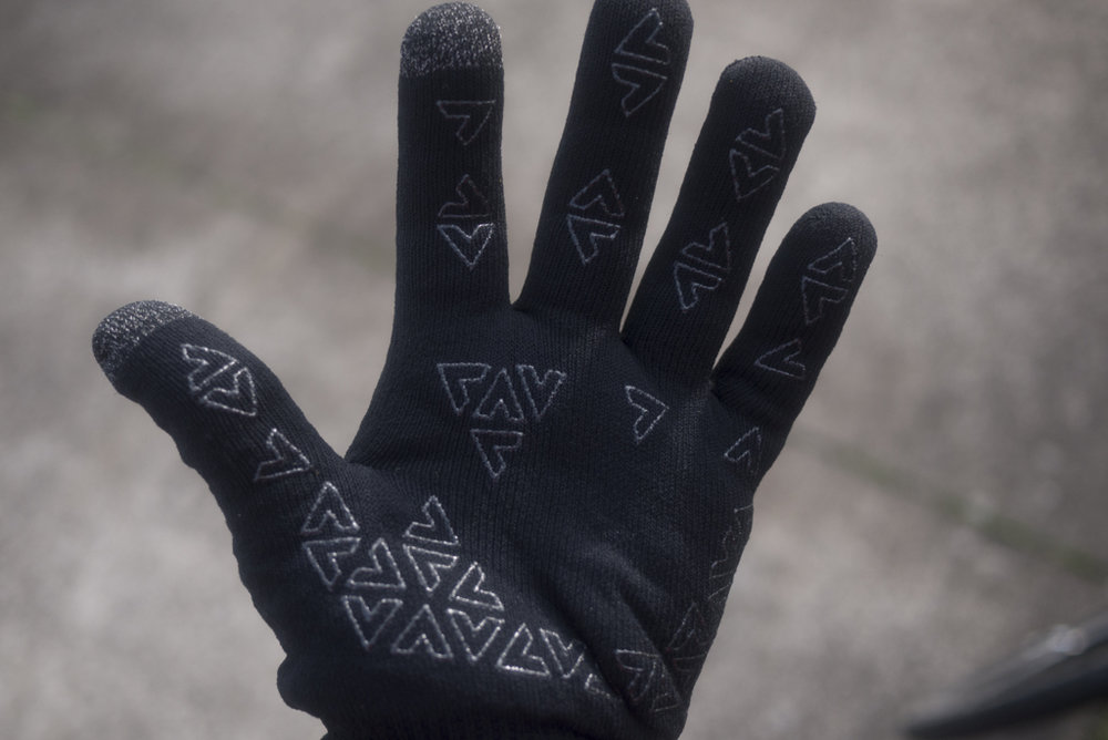 dsharp_sealskinzgloves-1140263.jpg