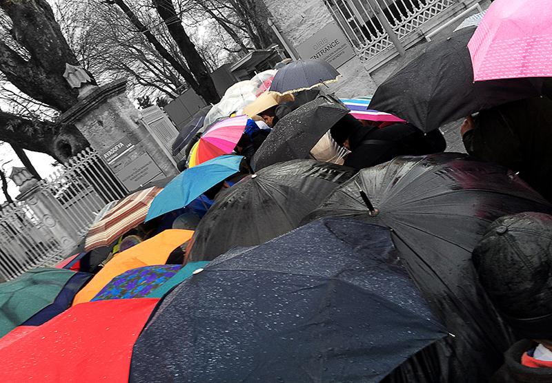 Istanbulumbrellas