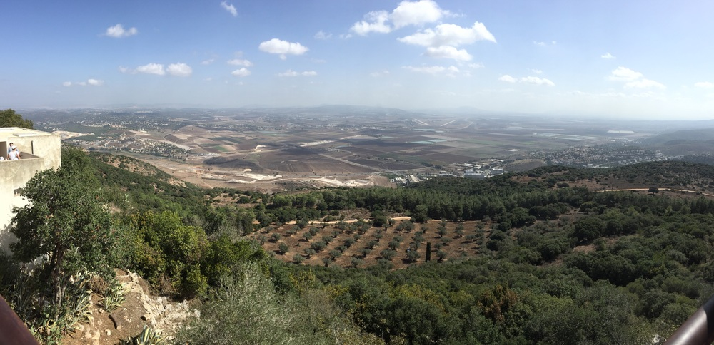 Our view of the Jezreel valley from Mt. Carmel, with a grove of Olive trees on the foothills.