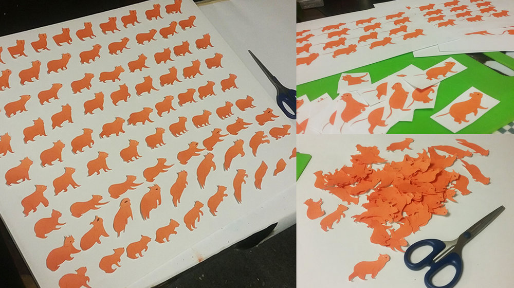 CAT_cutout.jpg