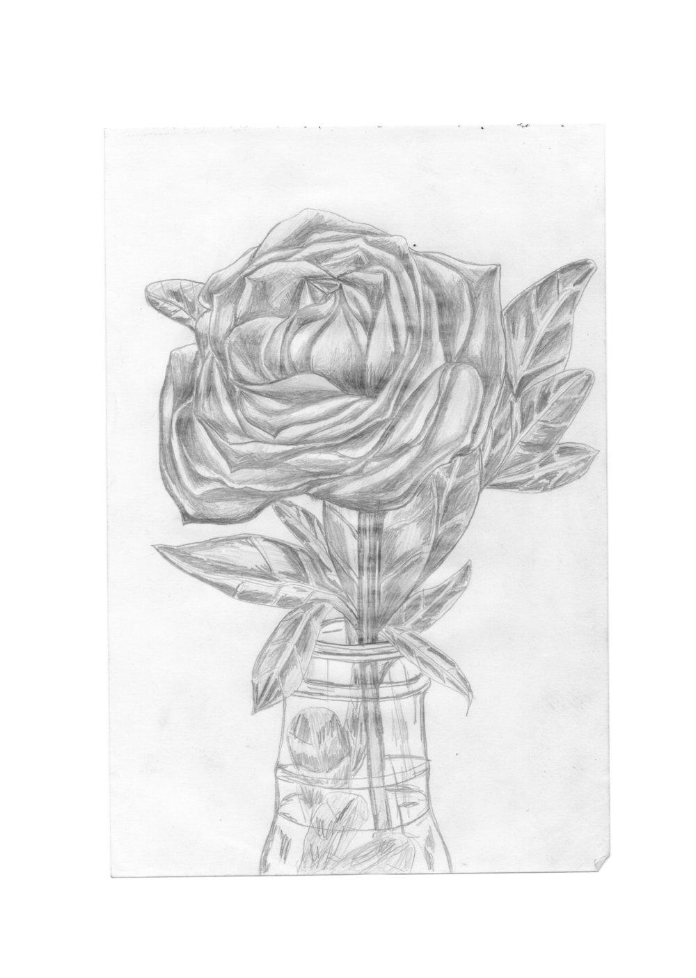 rose pencil.jpg