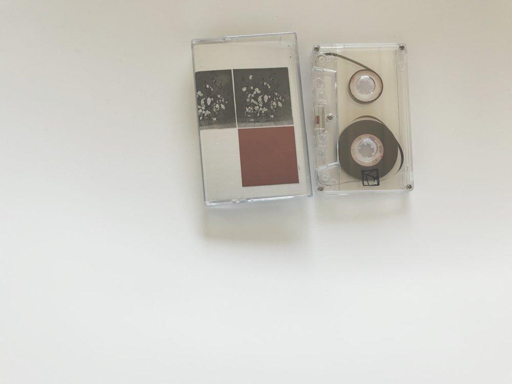 Aidan Baker & Lärmschutz -Heteroticisms Volume 4(Land Animal Tapes / Kotaktu Collective)