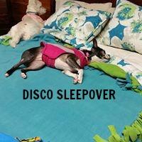 DISCO SLEEPOVER 2.jpg