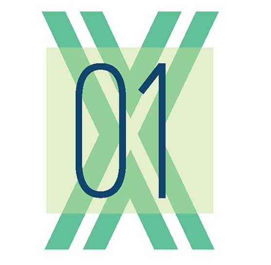 UI/UX 01XProject - Farash Grant Project