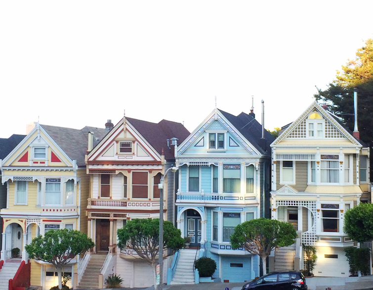 The famous Painted Ladies :)
