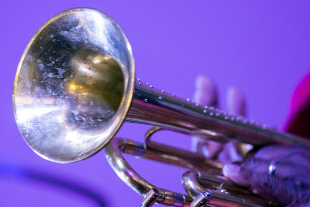 Kermit's Horn 2.jpg