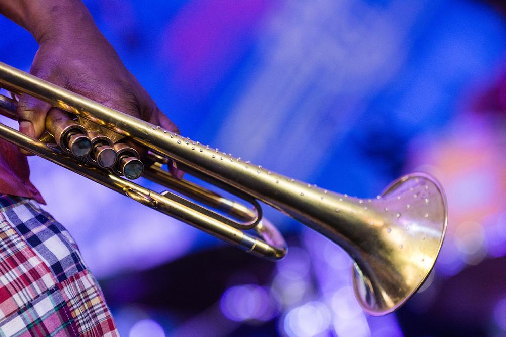 Kermit's Horn.jpg