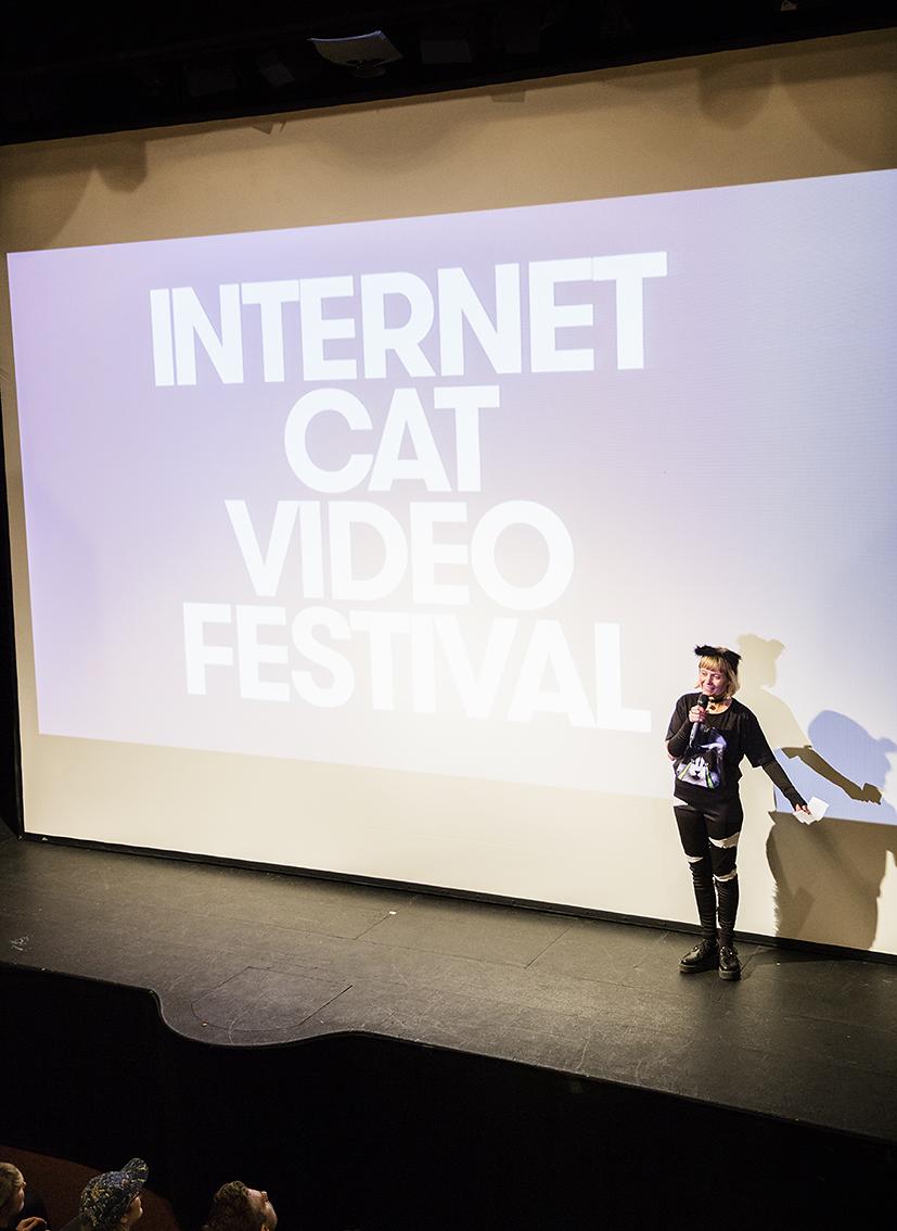 Anna Efraimsson presenterar Stockholm Internet Cat Video Festival Ladda ner