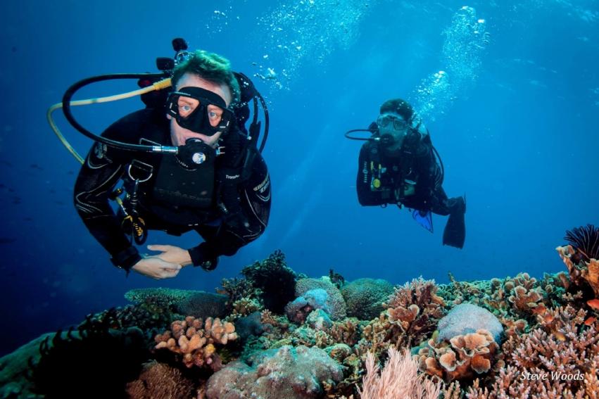 underwater divers.jpg