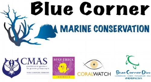 marine science courses bali
