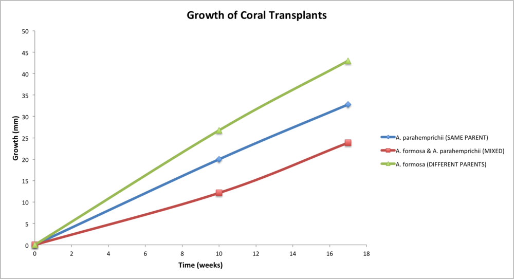 coral growth rates.png
