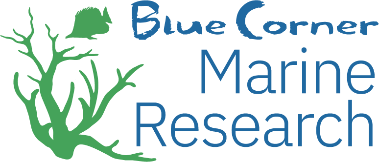 Blue Corner Conservation