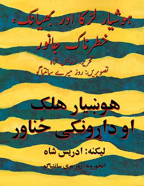 Clever-Boy-UrduPashto-cover.jpg