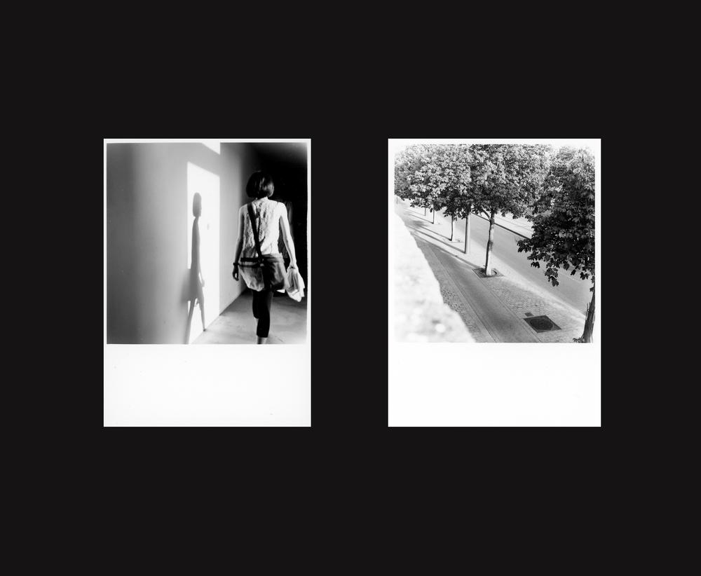 album24.jpg