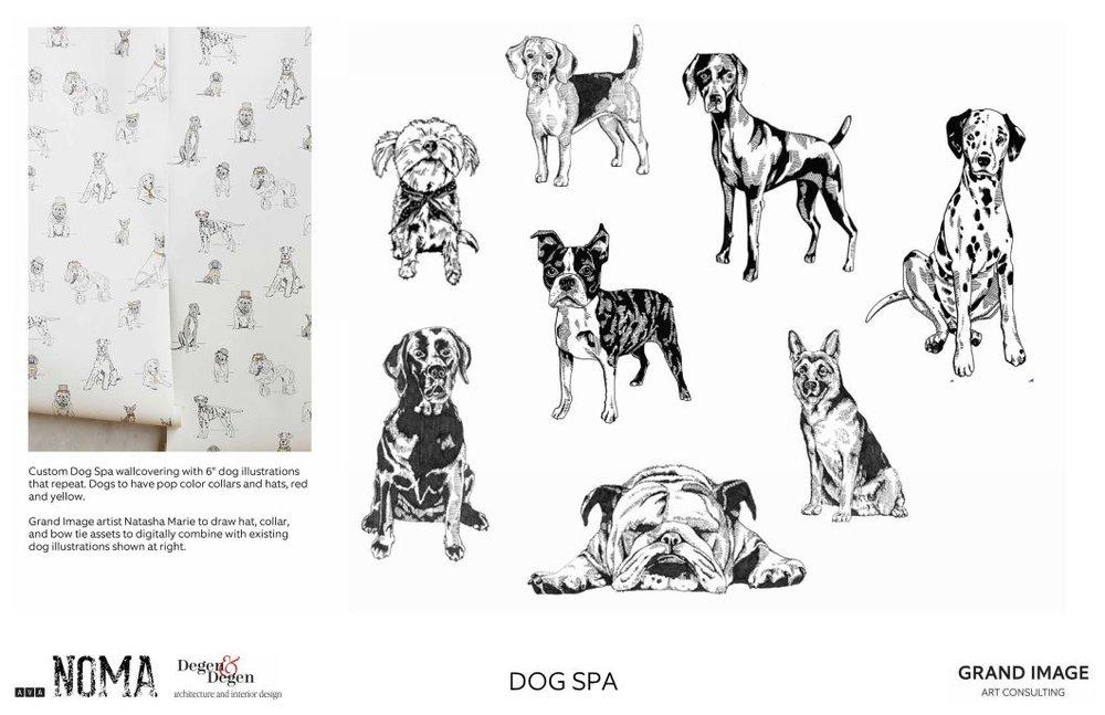 AVA NoMa Dog Spa.jpg