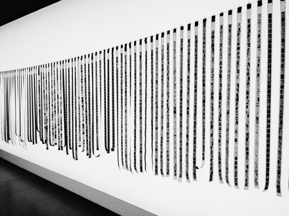 Installation view of  Trent Parke: The Black Rose , Art Gallery of South Australia, Adelaide, 2015. Photo: Pedro de Almeida.