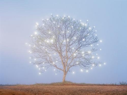 christmas-decorate-light-lights-sky-leina.jpg