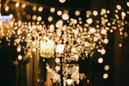 lights-leina.jpg